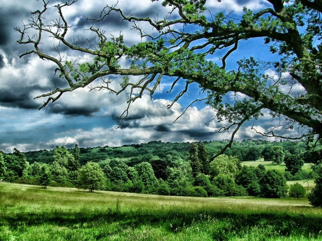 Kent England Sky United Kingdom Landscape Scenic